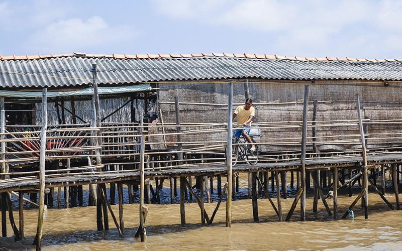 Biển Miền Tây - Tân Thành Gò Công